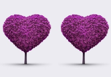 Couples counselling in London - two tree hearts