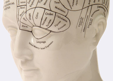 Phrenology head depicting a counselling psychologist in London