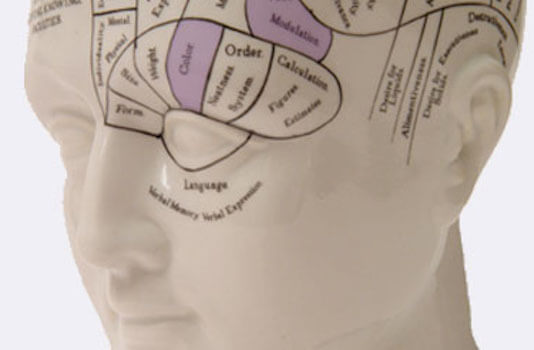 Abuse Counselling in London - Phrenology head