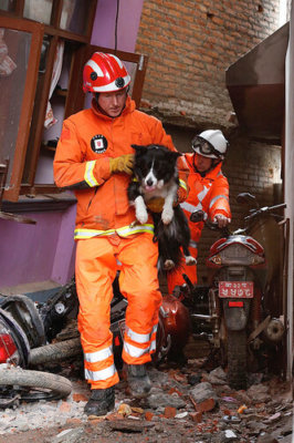 A fireman rescued dog