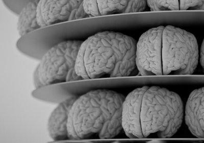 effects of trauma on brain