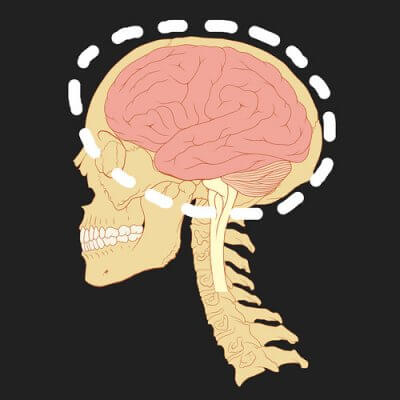 what is neuropsychiatry?