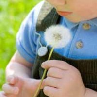 Child with leaf denoting attachment theory and principles