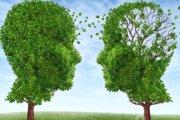 Cognitive Behavioral Therapy techniques